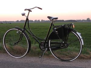 sit up and beg bike.jpg